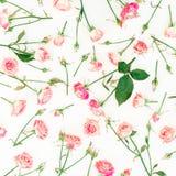 Bloemendiepatroon van roze bloemen op witte achtergrond wordt gemaakt Vlak leg, hoogste mening Rozenbloem Royalty-vrije Stock Fotografie