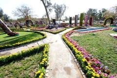 Bloemengalerij in Bagdad royalty-vrije stock foto's