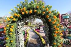 Bloemengalerij in Bagdad stock fotografie