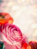 Bloemengrens met dichte omhooggaand van rode roze bloemen en bokeh achtergrond Feestelijke groet Royalty-vrije Stock Fotografie