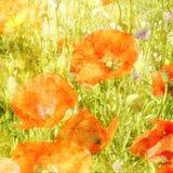 Bloemengrunge grafische achtergrond van de kunst Stock Foto