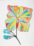 Bloemenillustratie op wit Stock Foto