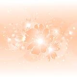 Bloemenillustratieachtergrond Stock Fotografie