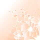 Bloemenillustratieachtergrond Stock Afbeelding