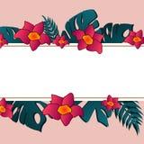 Bloemenkaartontwerp: palmblad en exotische bloem vector illustratie