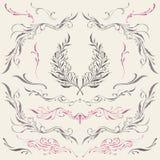 Bloemenkader & Grensornamenten Royalty-vrije Stock Afbeeldingen