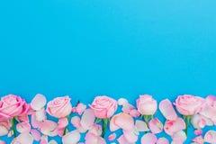 Bloemenkader met de knoppen en de bloemblaadjes van pastelkleurrozen op blauwe achtergrond Vlak leg, hoogste mening De roze textu royalty-vrije stock foto's