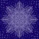 Bloemenkantsneeuwvlok met de winter motiv Royalty-vrije Stock Fotografie