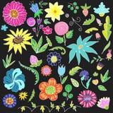 Bloemenkrabbelelementen voor Ontwerp Hand-drawn Vector beeld vector illustratie