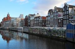 Bloemenmarkt (花市场)阿姆斯特丹 免版税图库摄影