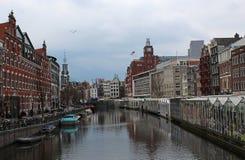 Bloemenmarkt (Blumen-Markt) Amsterdam Stockfotos