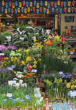 Bloemenmarkt (Blumen-Markt) Amsterdam Lizenzfreies Stockbild