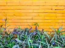 Bloemenmengsels met geschilderde bakstenen muur Stock Foto's