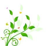 Bloemenontwerp als achtergrond Stock Foto