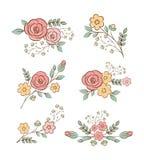 Bloemenontwerpelementen Stock Foto