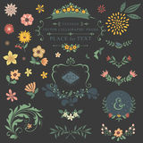 Bloemenontwerpreeks Stock Afbeelding