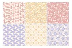 Bloemenornament Stock Afbeeldingen