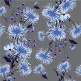In Bloemenpatroon in de kleine bloem Tropische Botanisch Stock Foto