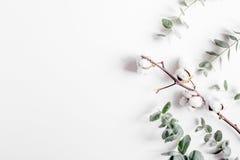 Bloemenpatroon met groene bladeren op wit achtergrond hoogste meningsmodel Royalty-vrije Stock Fotografie