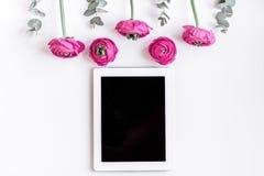 Bloemenpatroon met heldere bloem op wit achtergrond hoogste meningsmodel Royalty-vrije Stock Afbeelding