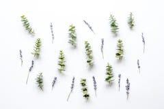 Bloemenpatroon met lavander en eucalyptus op witte hoogste mening als achtergrond Royalty-vrije Stock Fotografie