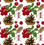 Bloemenpatroon met lingonberry, kegel, eikel en mieren Vectorillustratie, transparante achtergrond stock illustratie