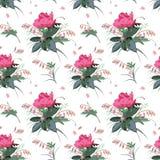 Bloemenpatroon met Pioenbloemen vector illustratie