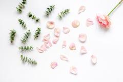 Bloemenpatroon met roze bloemblaadjes en eucalyptus op de witte mening van de lijstbovenkant Stock Afbeelding