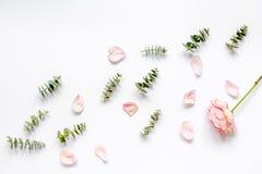 Bloemenpatroon met roze bloemblaadjes en eucalyptus op de witte mening van de lijstbovenkant Stock Foto's