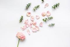 Bloemenpatroon met roze bloemblaadjes en eucalyptus op de witte mening van de lijstbovenkant Royalty-vrije Stock Foto