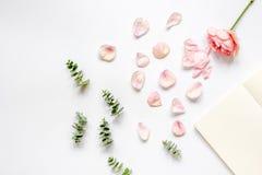 Bloemenpatroon met roze en eucalyptus op wit de meningsmodel van de lijstbovenkant Stock Afbeeldingen