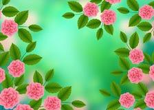 Bloemenpatroon met van Bloeiende Roze Rozen op Groene Vage Bokeh-Achtergrond Wildflowers en Pioenenboeket Vector illustratie stock illustratie
