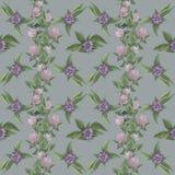 Bloemenpatroon met violette bloemen en klavers stock foto