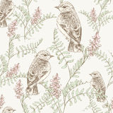 Bloemenpatroon met vogel Stock Afbeelding
