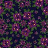 Bloemenpatroon, naadloze textuur uitstekende stijl, patroon met bloemen Stock Afbeelding