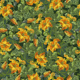 Bloemenpatroon, naadloze textuurbloemen in uitstekende stijl Stock Afbeeldingen