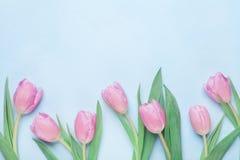 Bloemenpatroon voor 8 Maart, Internationale Vrouw of Moedersdag De mooie bloemen van de de lentetulp Hoogste mening royalty-vrije stock foto