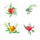 Bloemenreeks met waterverfbloemen Stock Afbeelding