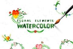 Bloemenreeks met waterverfbloemen Royalty-vrije Stock Fotografie