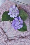 Bloemenregeling op de raad Stock Foto