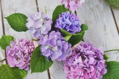 Bloemenregeling op de raad Royalty-vrije Stock Afbeelding