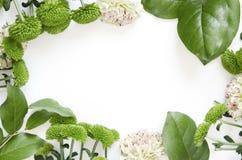 Bloemensamenstelling Kader van bloemen en bladeren op witte achtergrond wordt gemaakt die royalty-vrije stock afbeelding