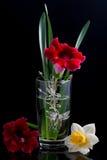 Bloemensamenstelling met een glas royalty-vrije stock foto