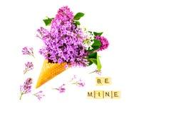 Bloemensamenstelling Sering in wafelkegel Vlak leg, hoogste mening, exemplaarruimte Concept voorstel en liefde Stock Foto