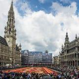 Bloementapijt 2014 in Brussel Stock Afbeelding