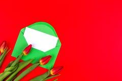 Bloementulpen en groene envelop met witte kaart op rode achtergrond Royalty-vrije Stock Afbeeldingen