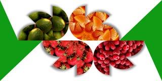 Bloemenvormenhoogtepunt van fruitige texturen Stock Foto