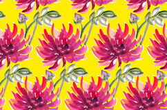 Bloemenwatercolourdahlia aster, chrysant Royalty-vrije Stock Afbeeldingen