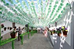 Bloemfestival (festas do povo, Campo Maior 2015, Portugal) Royalty-vrije Stock Foto