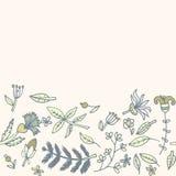 Bloemgrens, naadloze textuur met bloemen Gebruik als groetkaart Stock Foto's